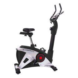 Bike Indoor 309